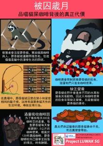 Civet Infographic 3 - Chinese